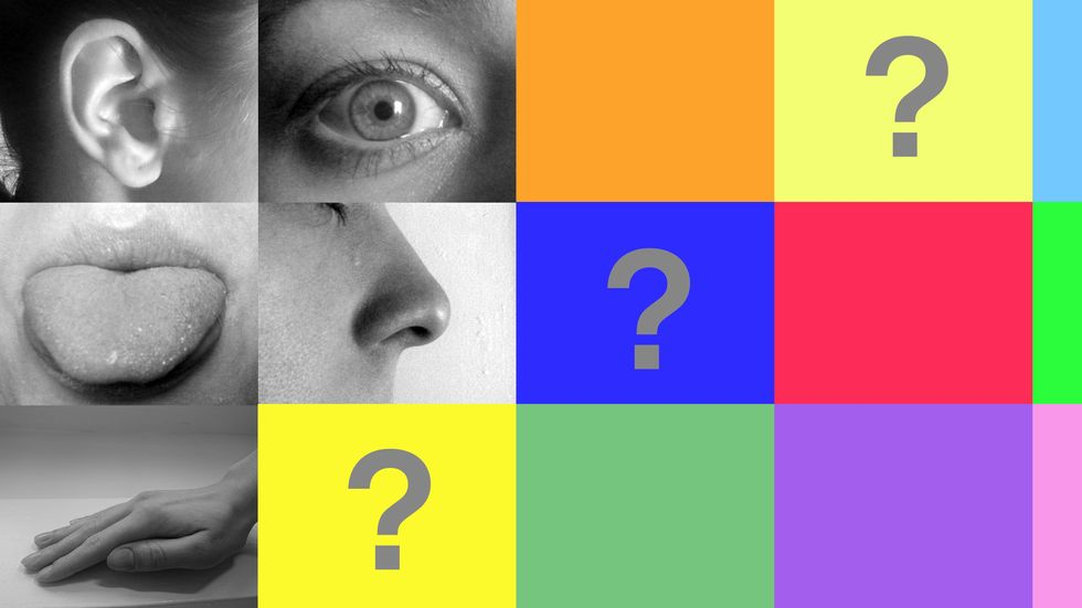Five senses? That biology textbook is due for an update. (Image: Wikicommons/Big Think)