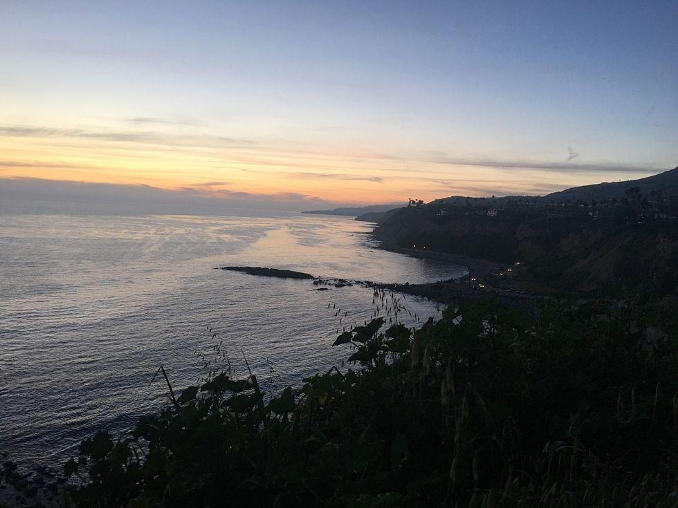 This Coastal Town Has A Big Blue (cocky) Secret
