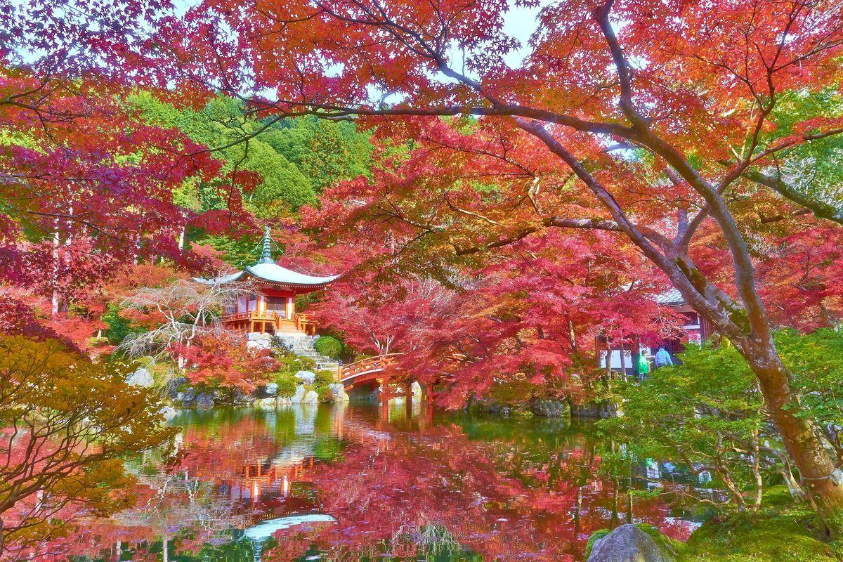 È di nuovo tempo di vacanze. I consigli per viaggiare in autunno senza spendere troppo