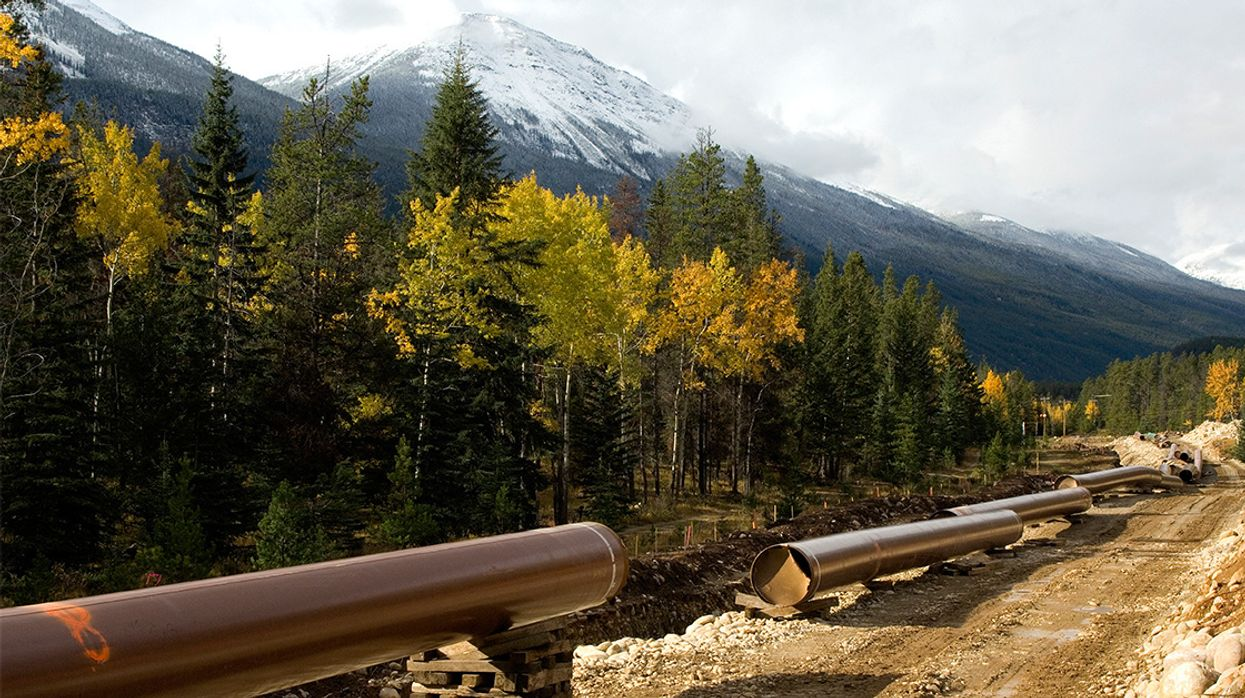 Stunning Victory for Indigenous Nations as Canada Halts Trans Mountain Pipeline Expansion