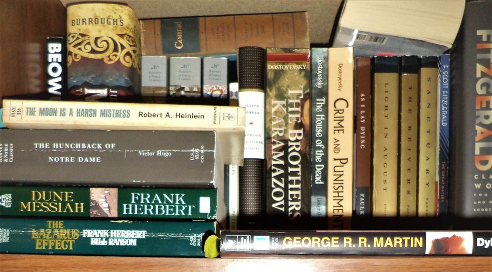 Is Literary Fiction Elitist?