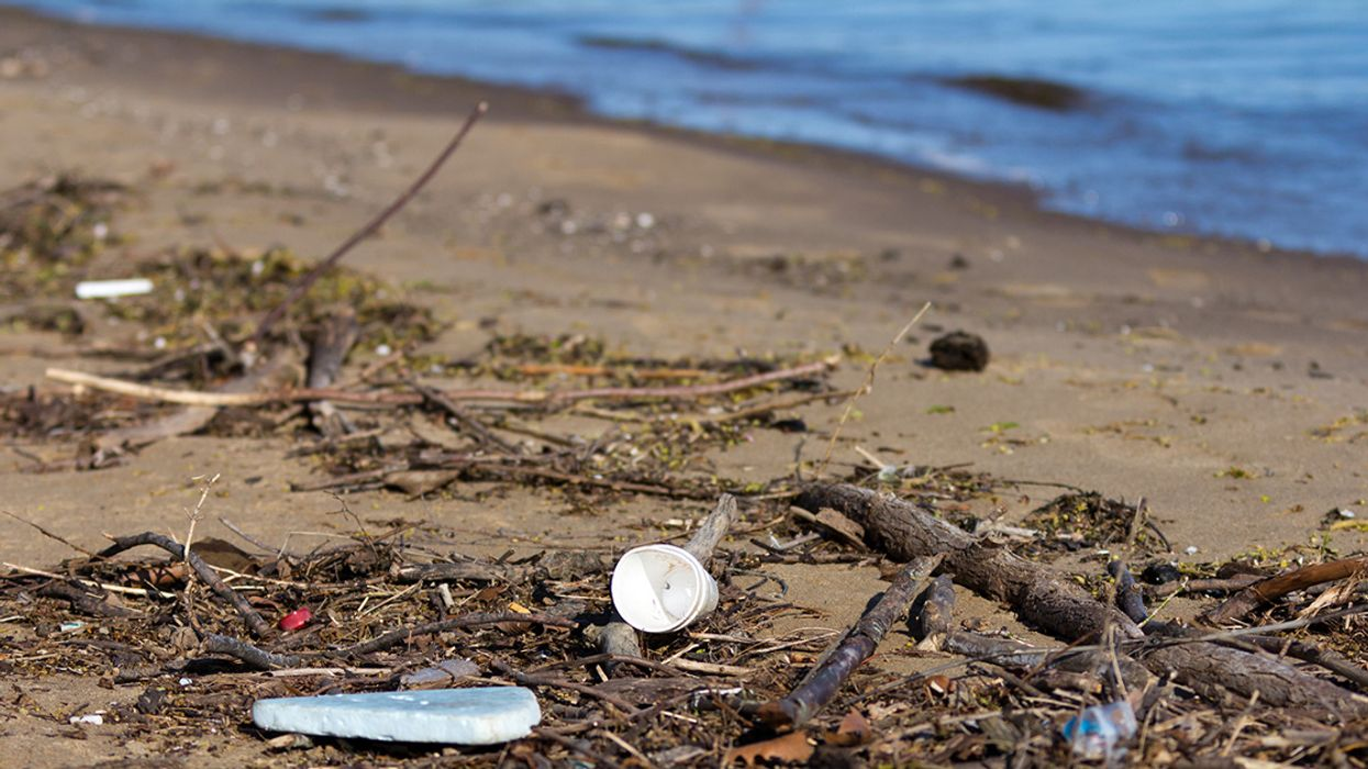 Tons of Plastic Trash Enter the Great Lakes Every Year – Where Does It Go?