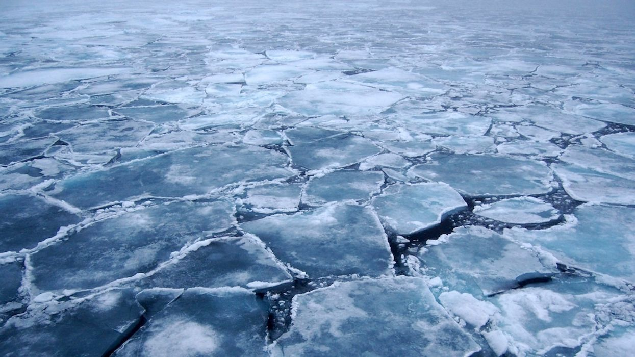Strongest, Oldest Arctic Sea Ice Breaks Up for First Time on Record