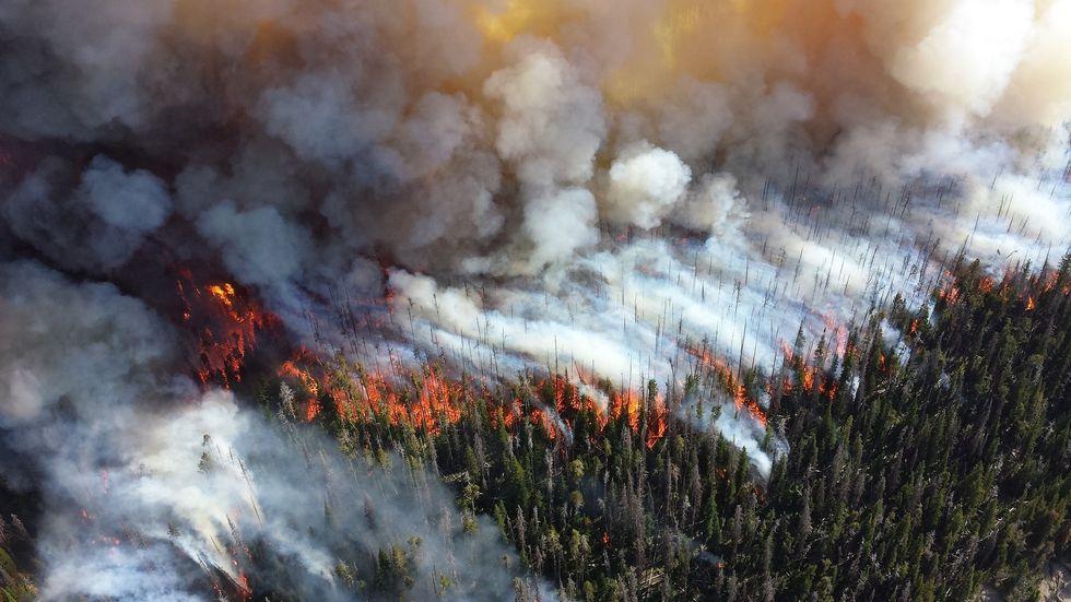 Quick Checklist For California Wildfire Preparedness