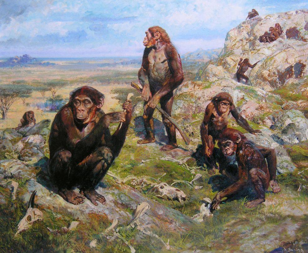 Chimps roaming ancient Europe.