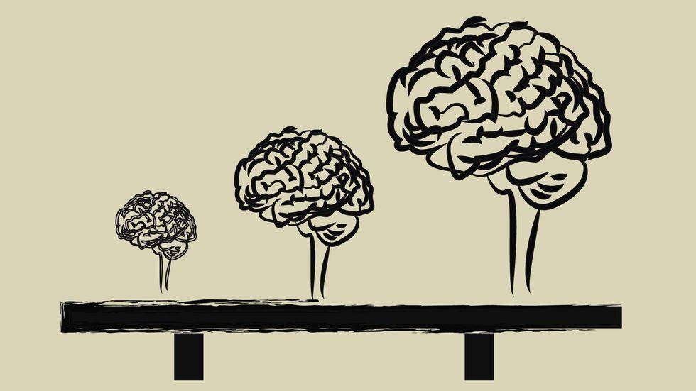 """Big Brain Gene"" Fueled Evolution of Human Intelligence"