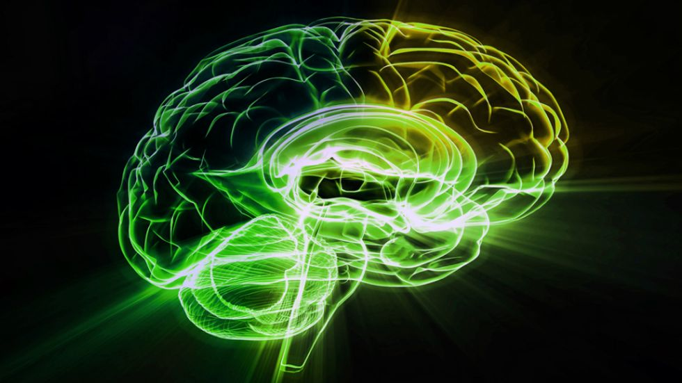 Crowdfunding Enables Groundbreaking Research of Brains on LSD