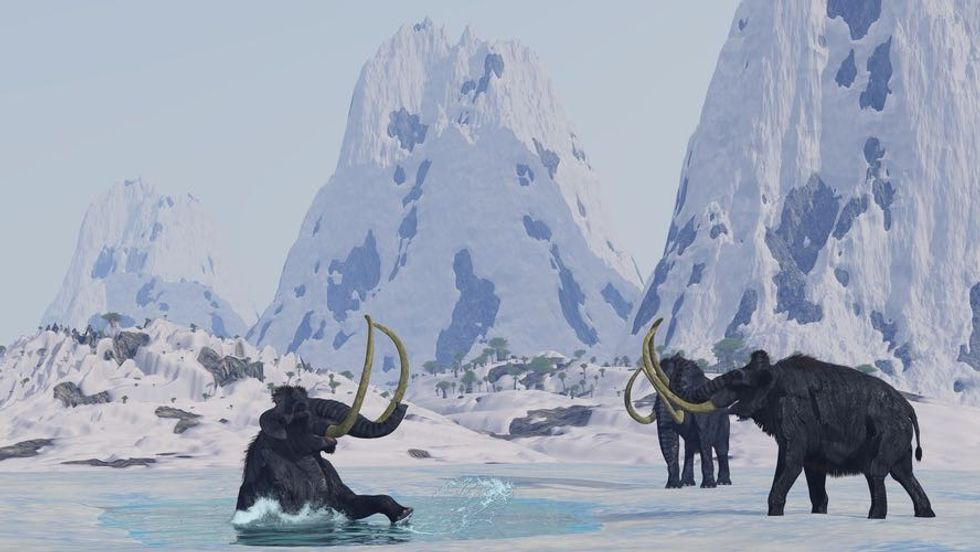 South Korea Determined to Revive the Woolly Mammoth