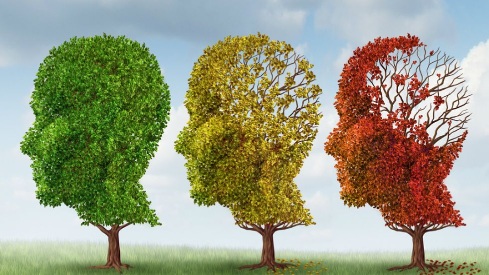 Alzheimer's Epidemic Approaches as Marriage Rate Falls