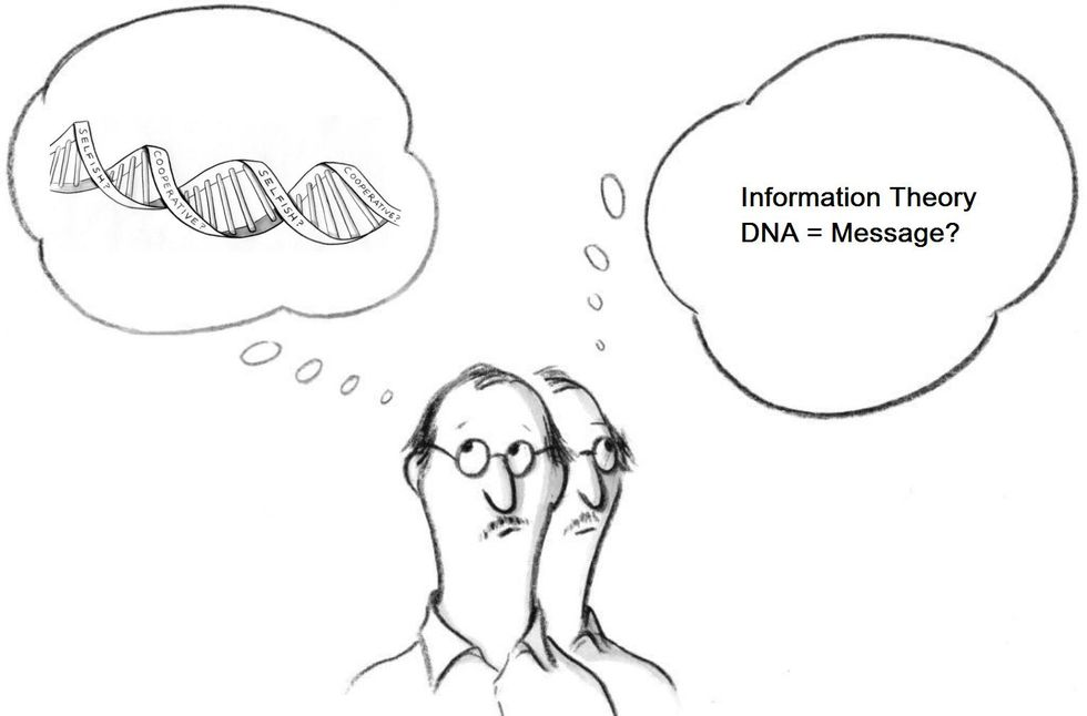 'Information Theory' Is Misinforming Us (Because The Meaning Isn't In The Message).