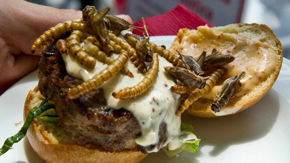 We'll Be Eating a Lot More Bugs in the Future