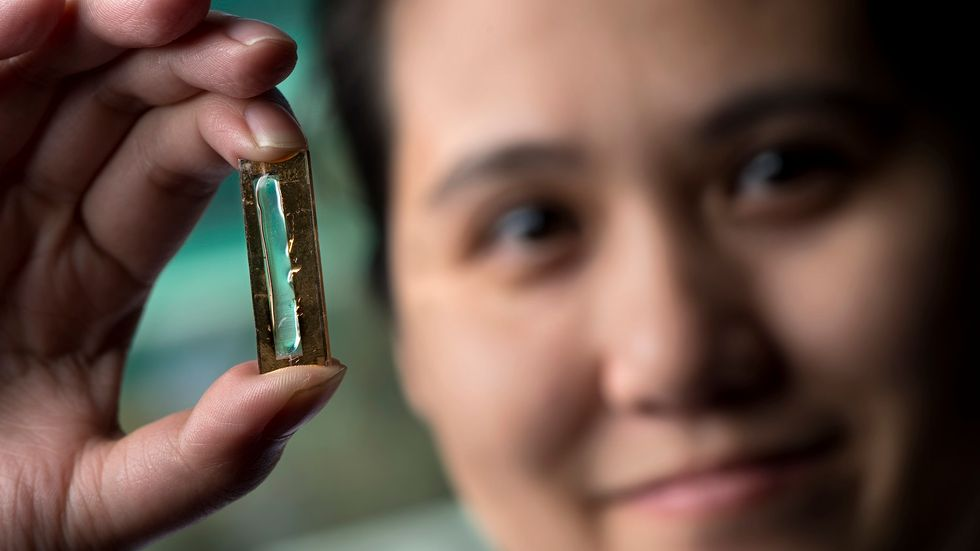 Scientists Accidentally Create a Battery That Can Outlast Your Device