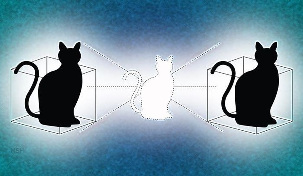 Spooky Quantum Cats