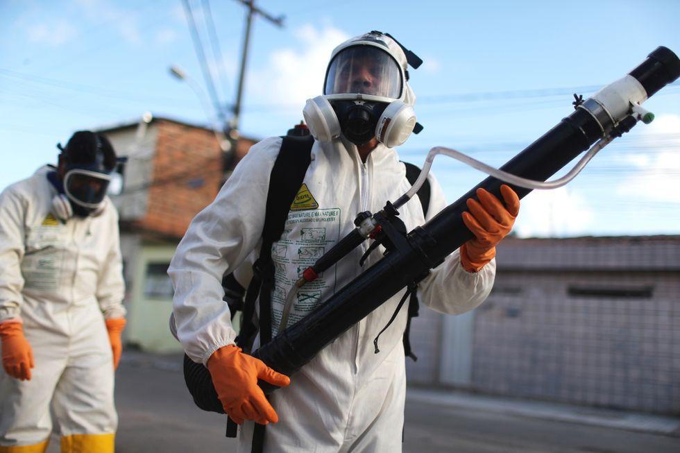 worker fighting pika virus