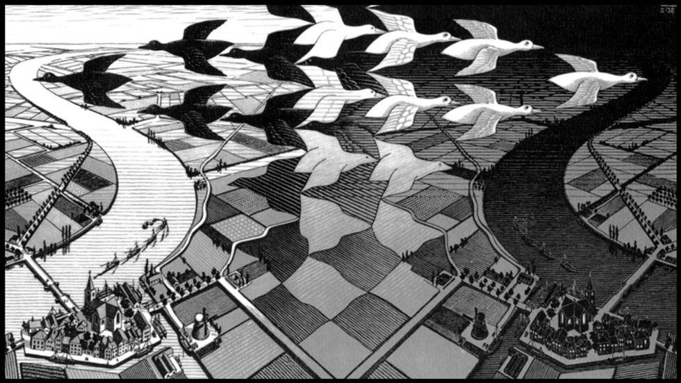 Birds in the Escher dimension