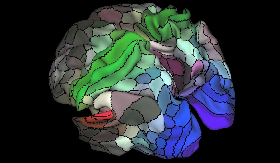 The New Map of the Brain