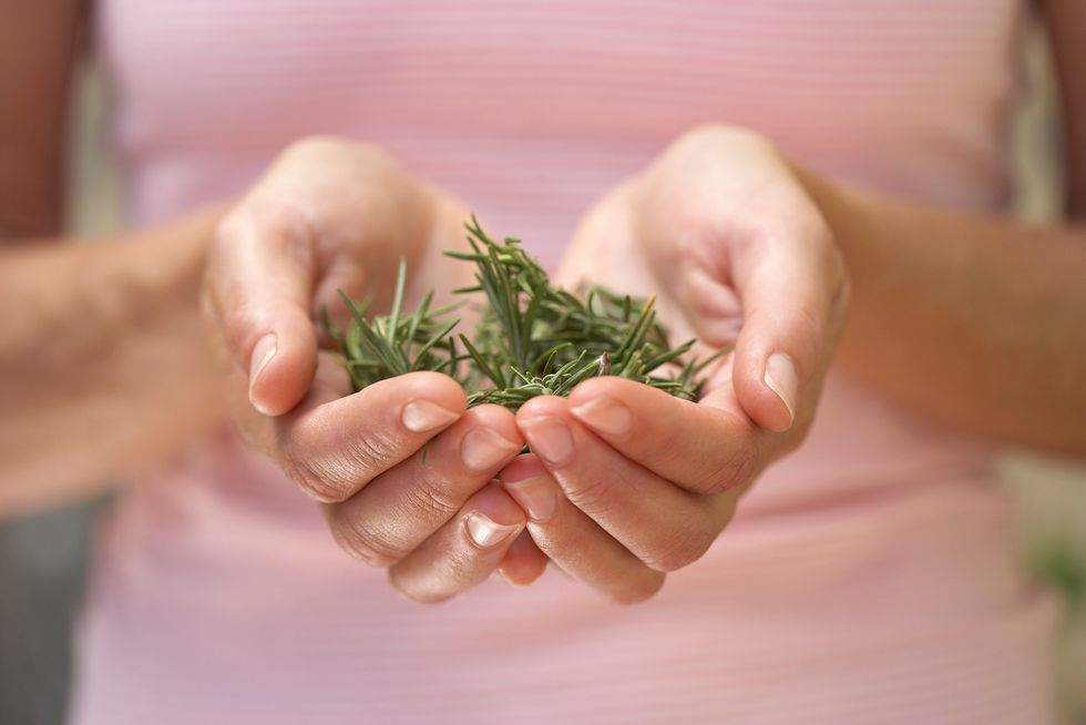 A woman holding rosemary.