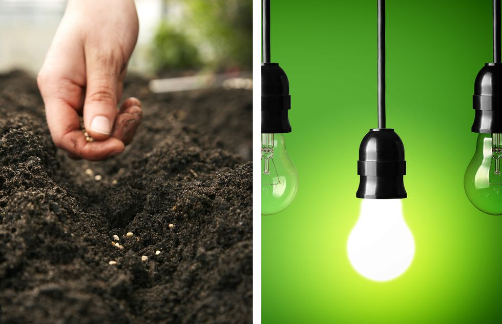 A hand planting a seed, versus an illuminated light bulb.