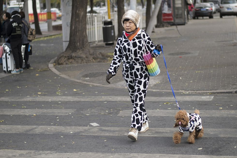 A woman walked her dog in winter, both wearing matching black and white jumpsuits.