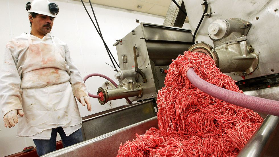 An unidentified worker monitors a meat grinding machine as it grinds beef at Ray's Wholesale Meats in Yakima, Washington. U.S. (Photo: Justin Sullivan/Getty Images)