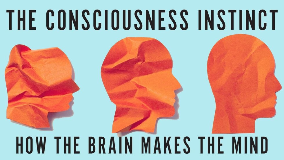 Cover image of The Consciousness Instinct by Michael S. Gazzaniga