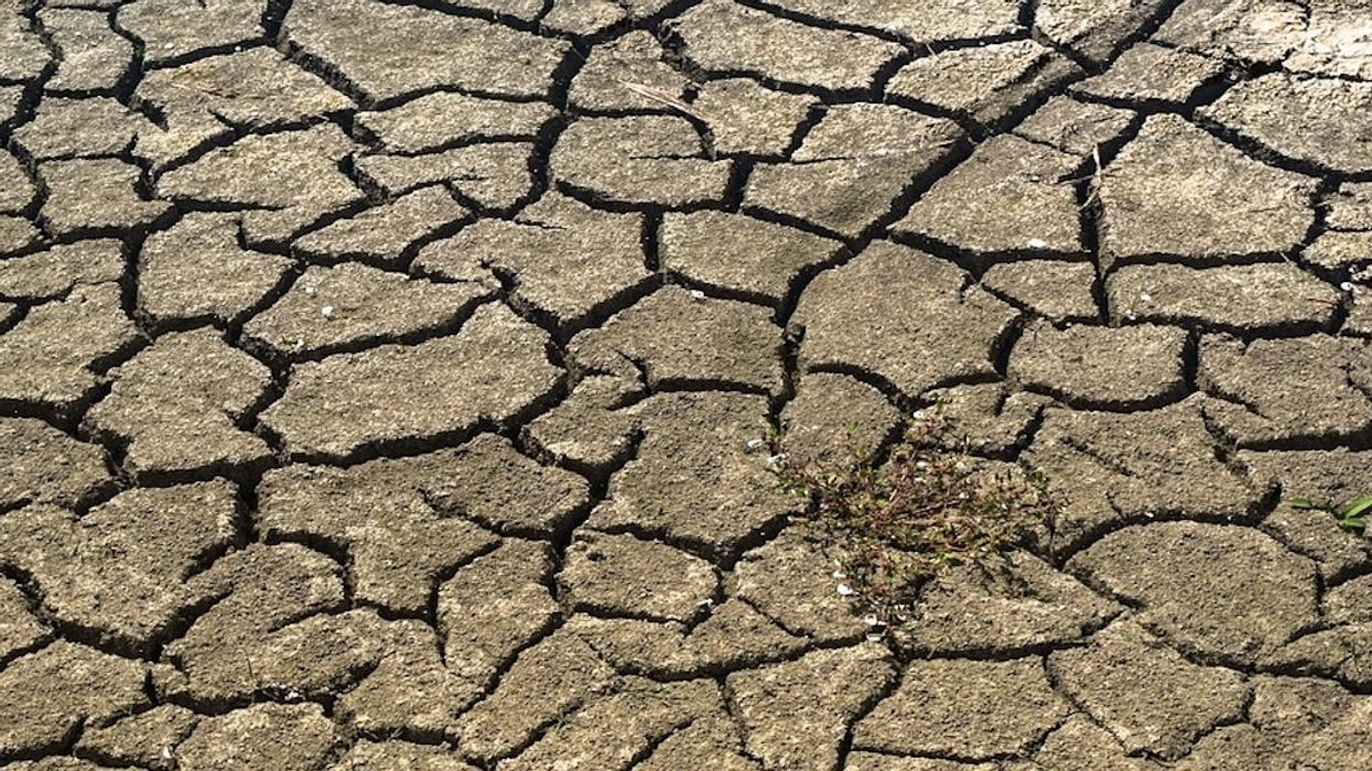 Climate Change a 'Key Driver' Behind Rising Global Hunger
