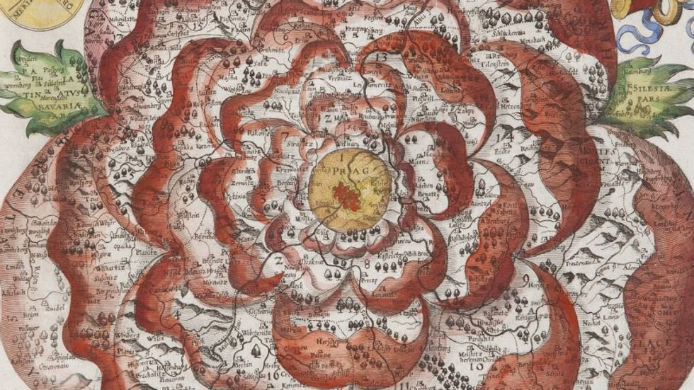 The Rose of Bohemia, the Power Flower of Cartography