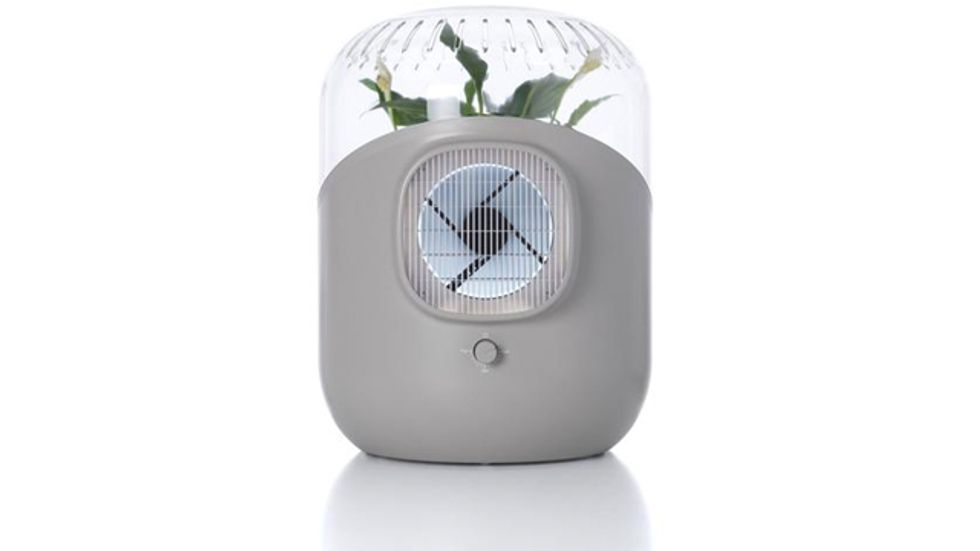 ANDREA Air: Turn Any Plant into a Powerful Air Purifier