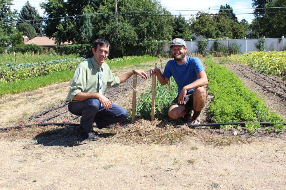 Denver Green School seeds new innovation – growing their own food