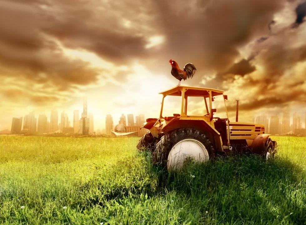 When Robots Run Our Nation's Farms