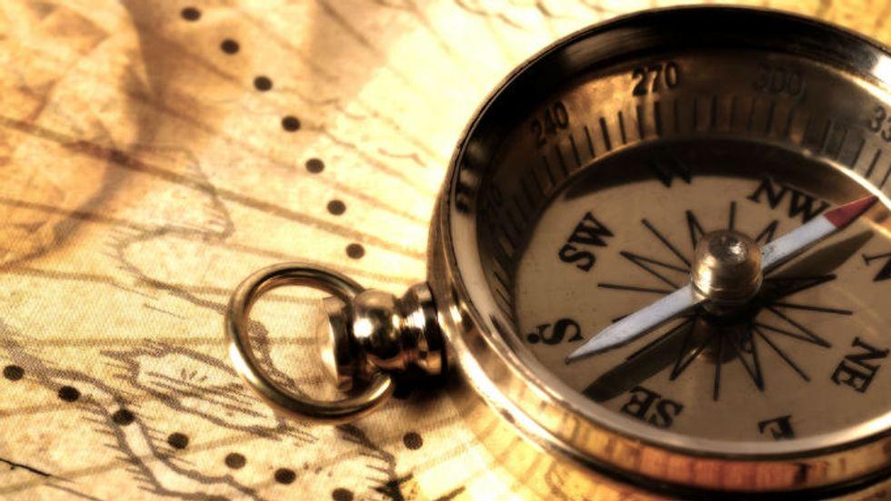 Purpose as a Compass