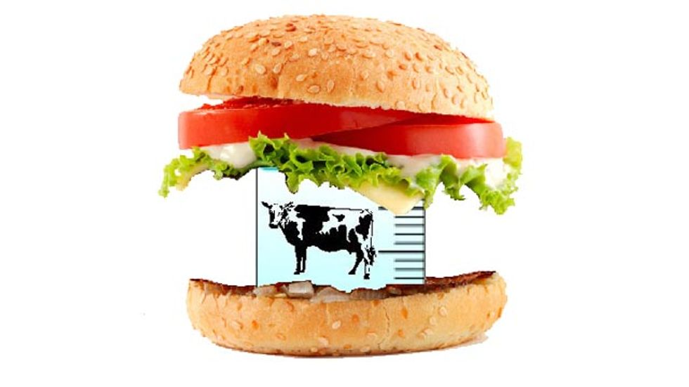 Frankenmeat: Growing a Burger in a Petri Dish