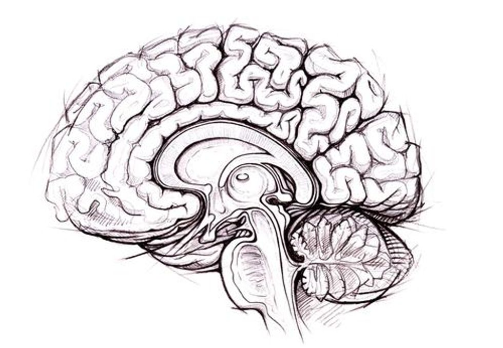 A Wandering Mind Is an Intelligent Mind