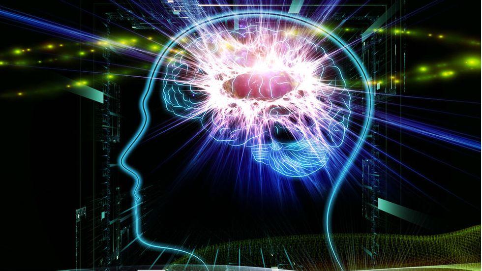 Power Up Your Brain: Myth vs. Reality