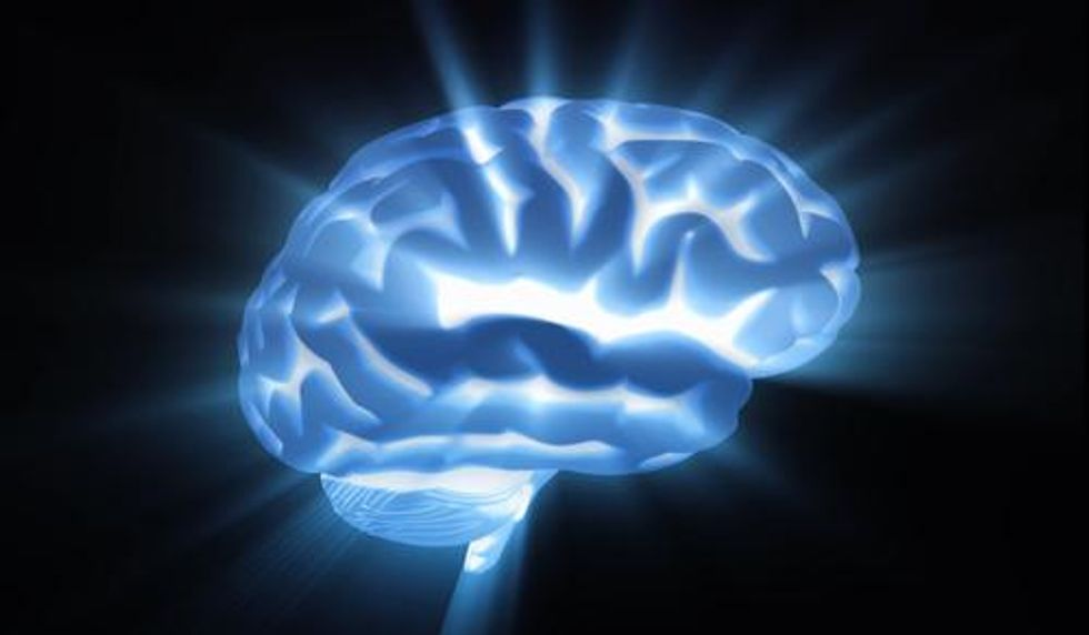 How the Brain Allows for Free Will