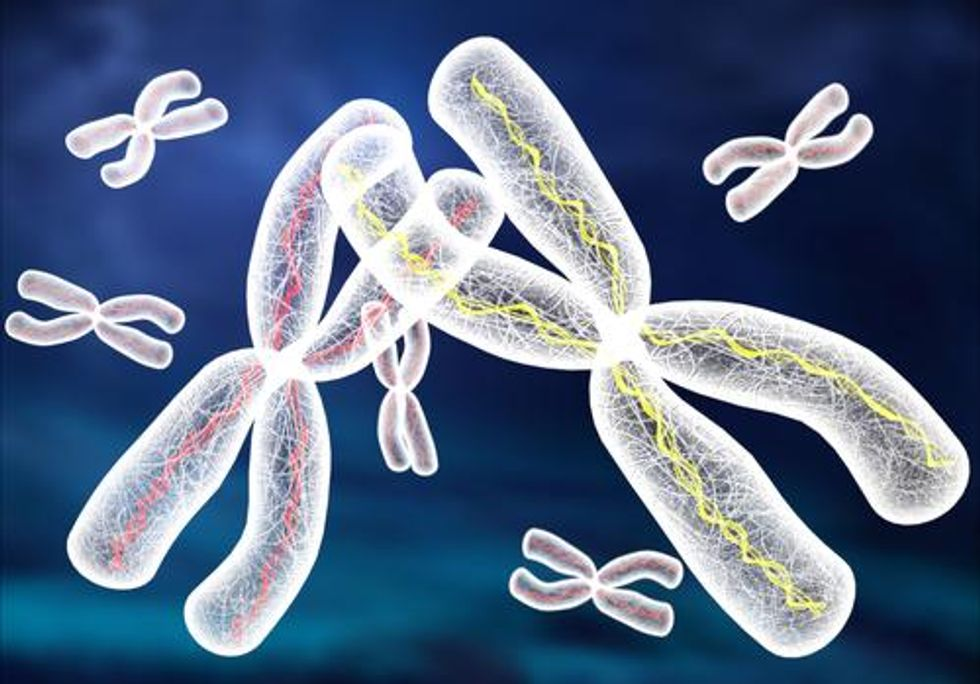 Scientists Remove Extra Chromosome From Down Syndrome Line