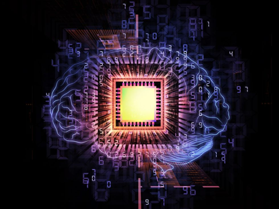 The Most Amazing Race: Reverse-Engineering the Brain