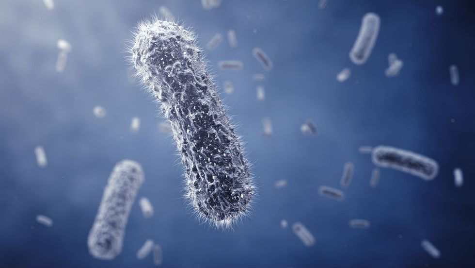 Let's Talk Some Crap. Breaking the Bacteria Taboo.
