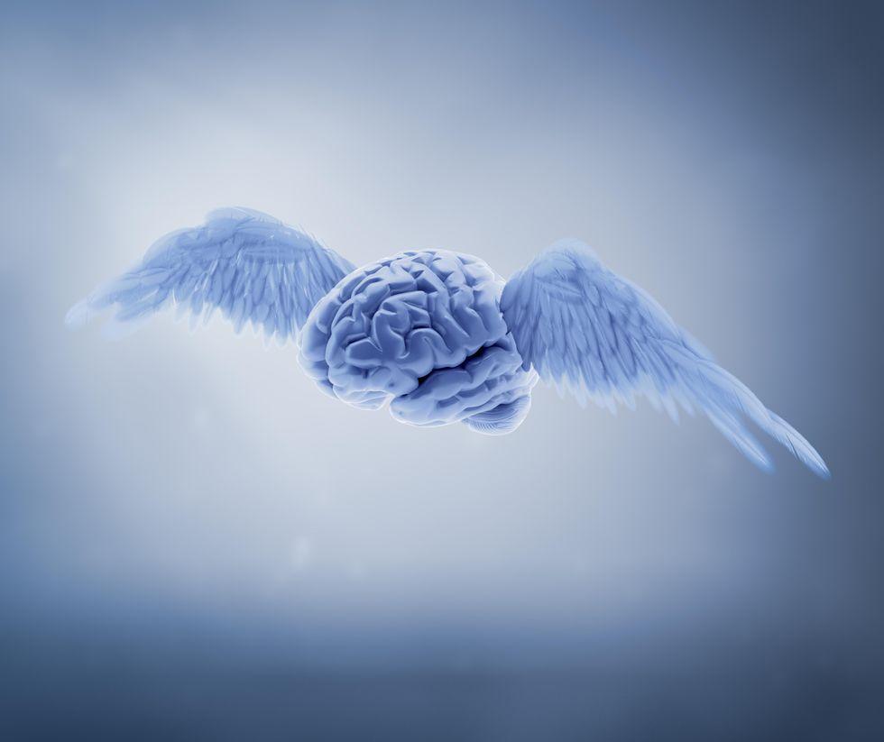 Will Neuroscience Conquer Art?