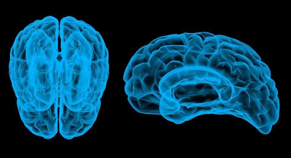 Is the Brain Hardwired for Criminal Behavior?