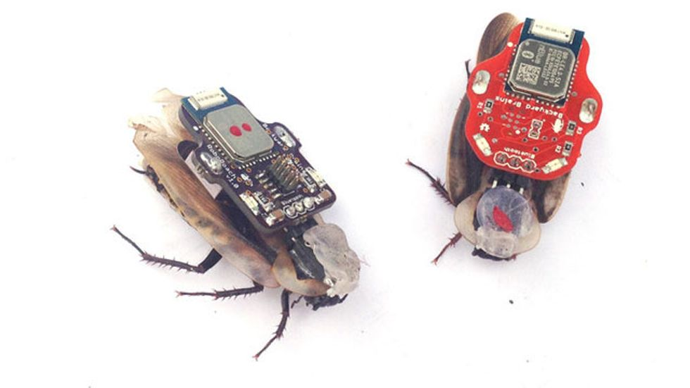 A Kickstarter launched a couple of days ago is already half way to letting you control a cockroach with your phone, but is this ethical?