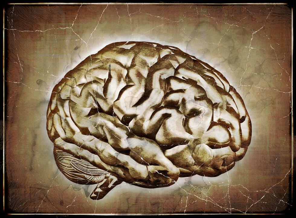 The New Horizon of Neuroscience