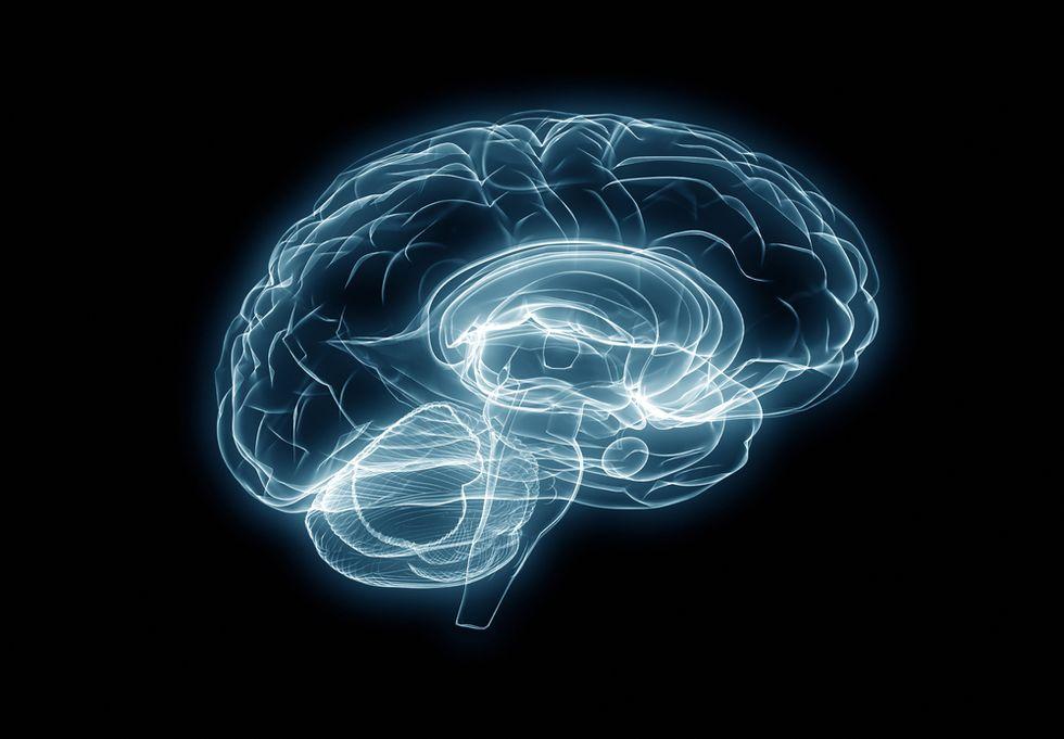 The Surprising Neurobiology of the Parental Brain