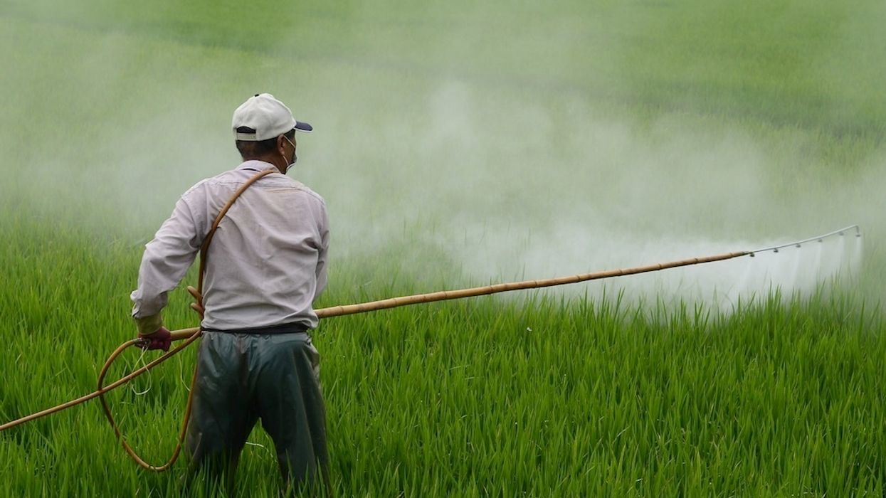 Trump Administration Asks Court to Re-Hear Case That Banned Chlorpyrifos