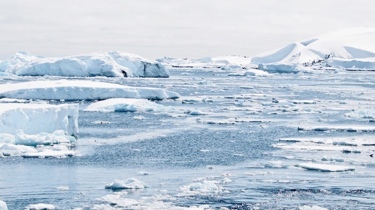 Scientists Link Southern Ocean's Rapid Warming to Human Activity