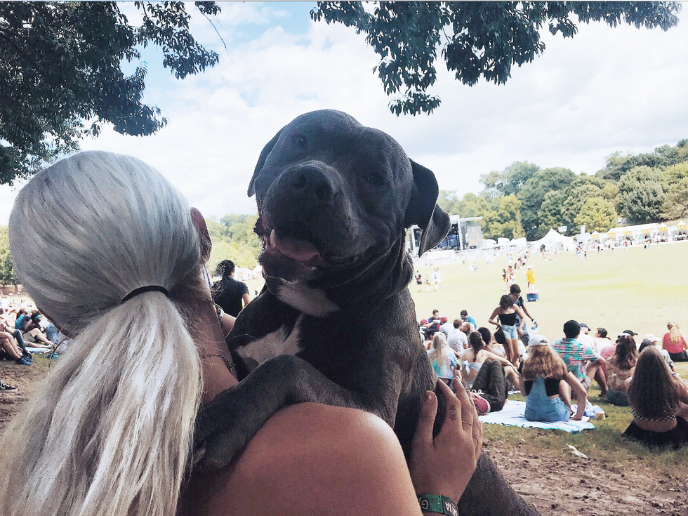 10 Crazy Things You Hear When You Take Your Service Dog To A Music Festival