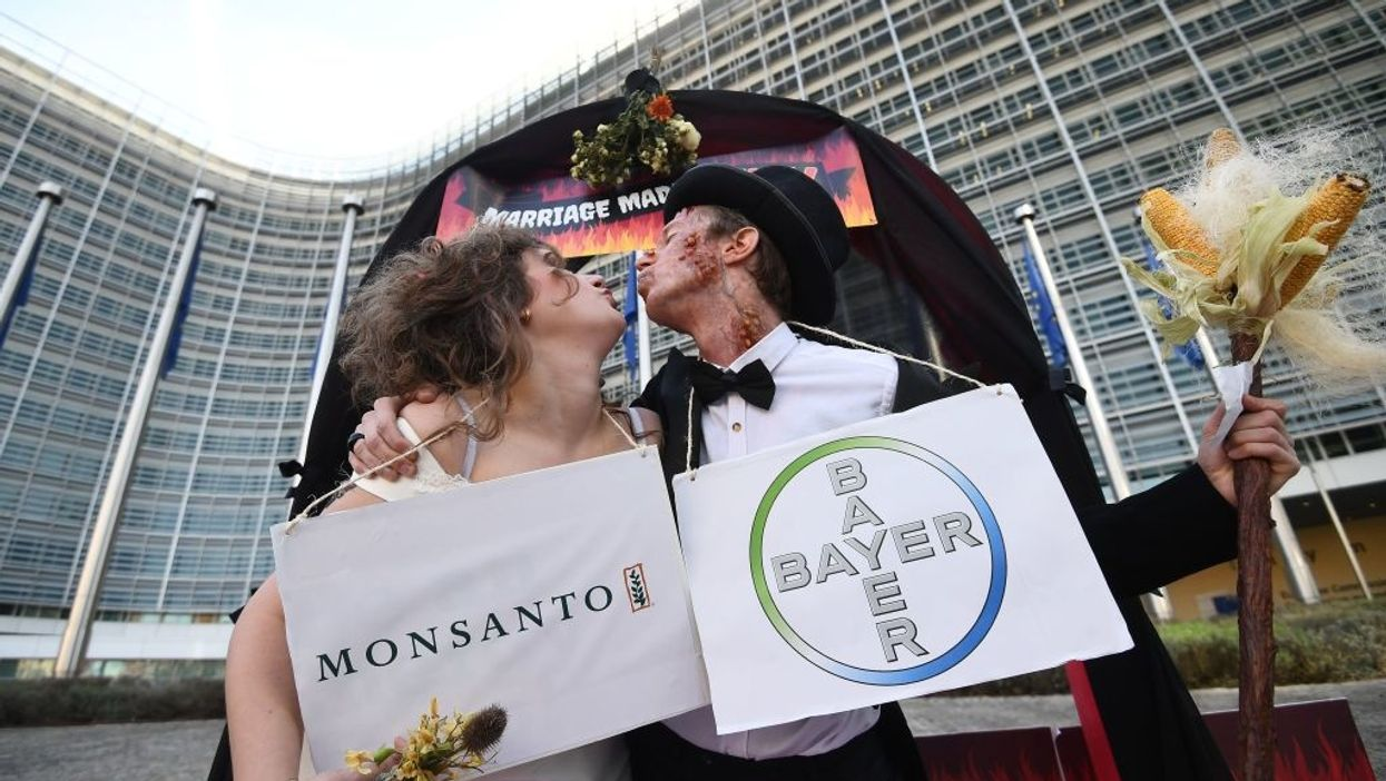 Publisher: Roundup Studies Failed to Fully Disclose Monsanto's Role