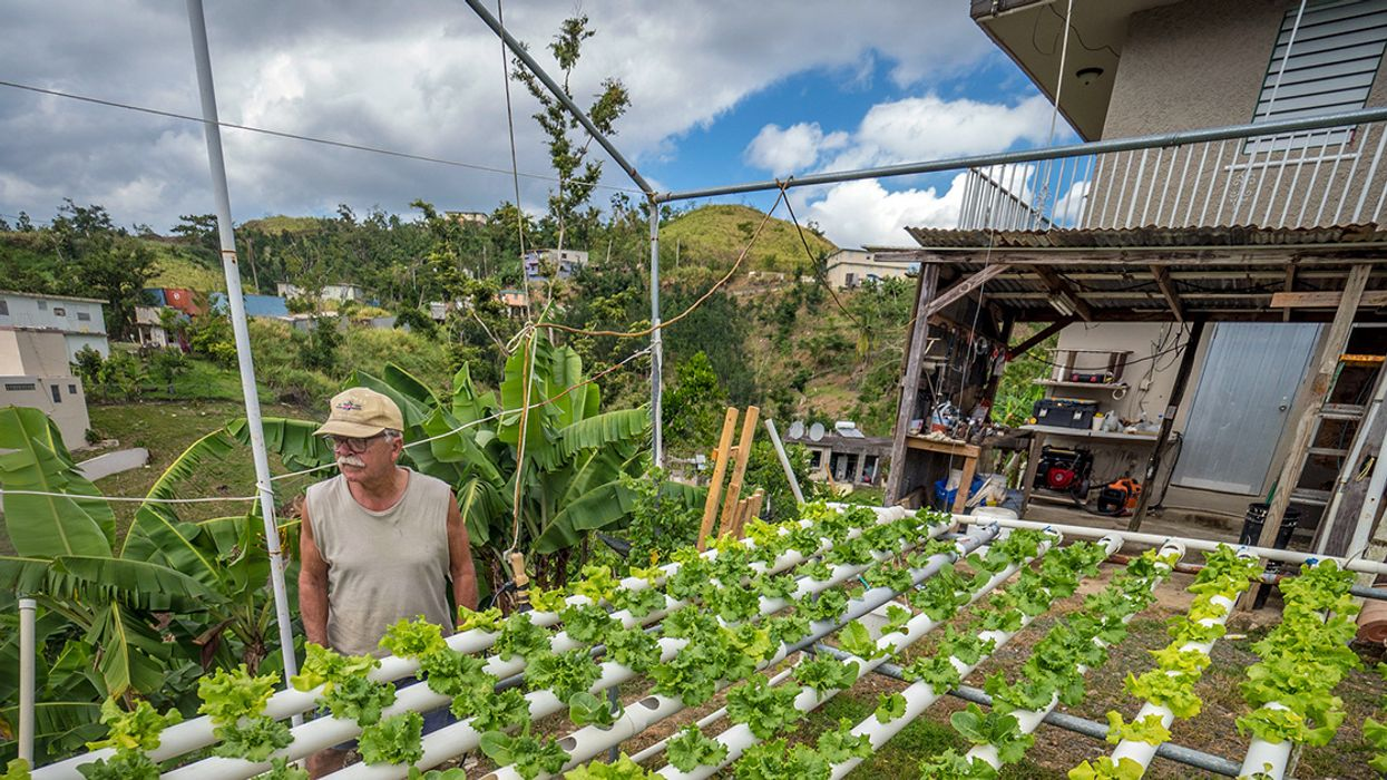 A Local Food Revolution in Puerto Rico