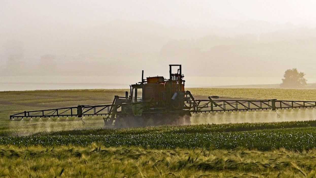 FDA Finds Weed Killer in Most Corn, Soy at 'Non-Violative Levels'