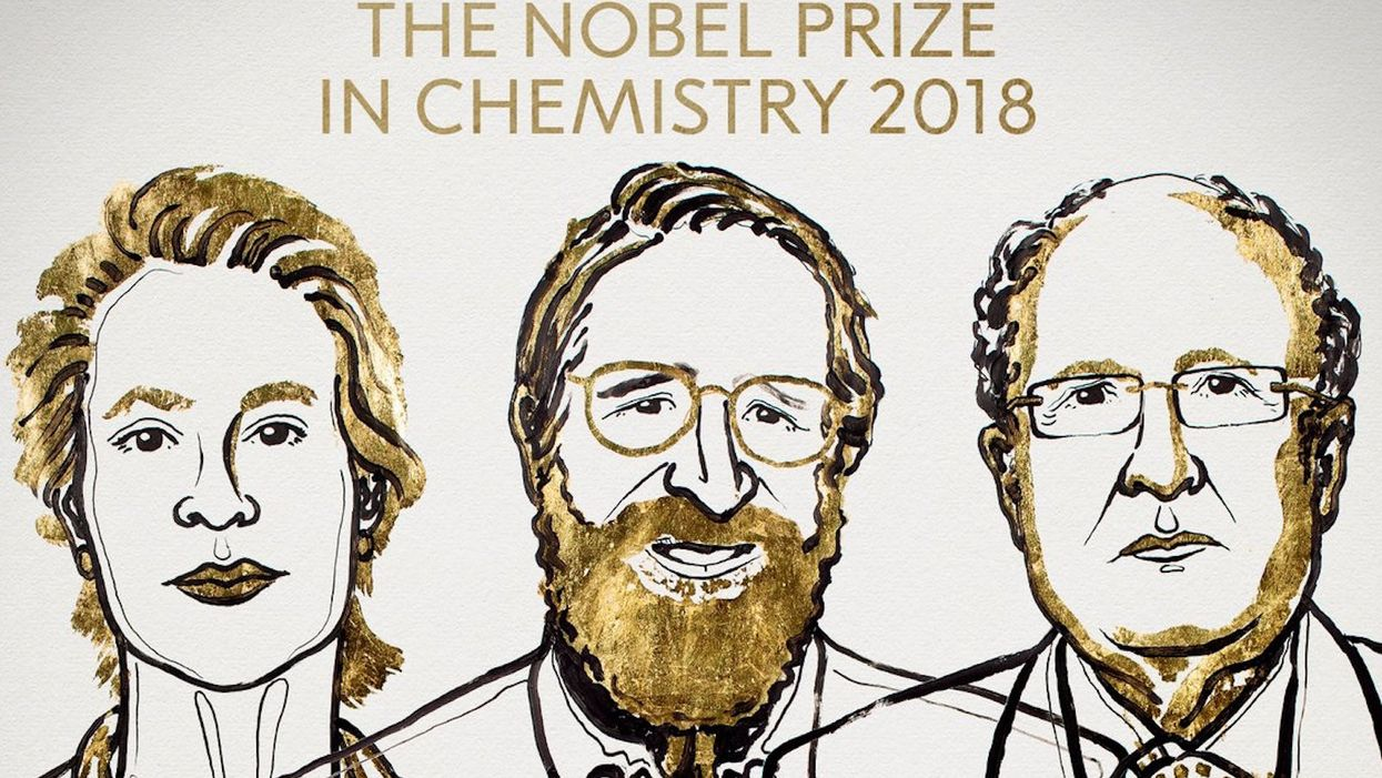 The 2018 Nobel Prize in Chemistry winners all work with 'directed' evolution